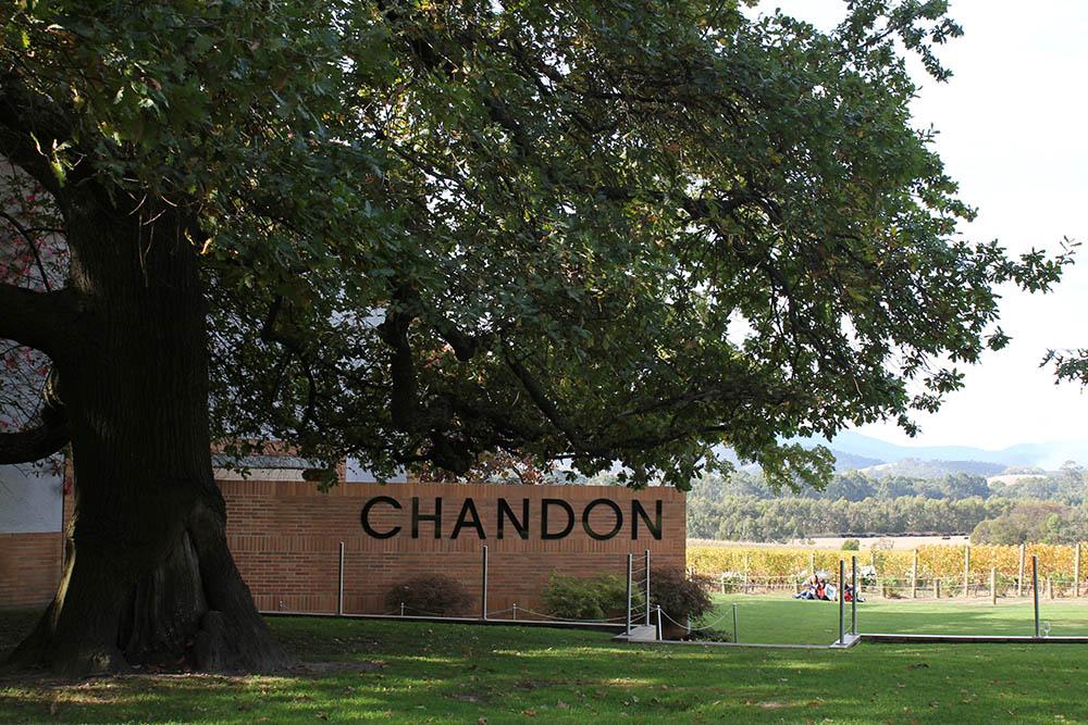 Chandon Winery (13)edit