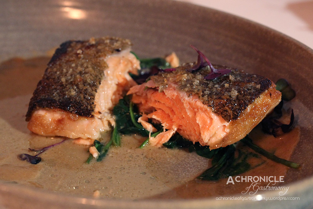 Fish of the Day - Trout
