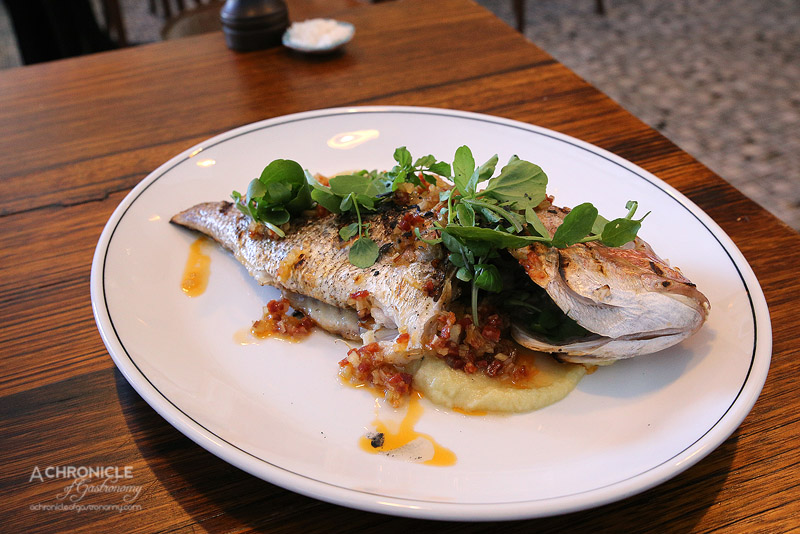 Saint Urban - Whole Baby Snapper with Fennel Puree, Pickled Chorizo, Rhubarb ($33)