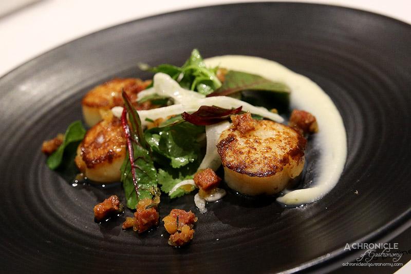Vivace - Caramelised scallops, cauliflower, chorizo, shallots, fennel, capers & coriander ($24)