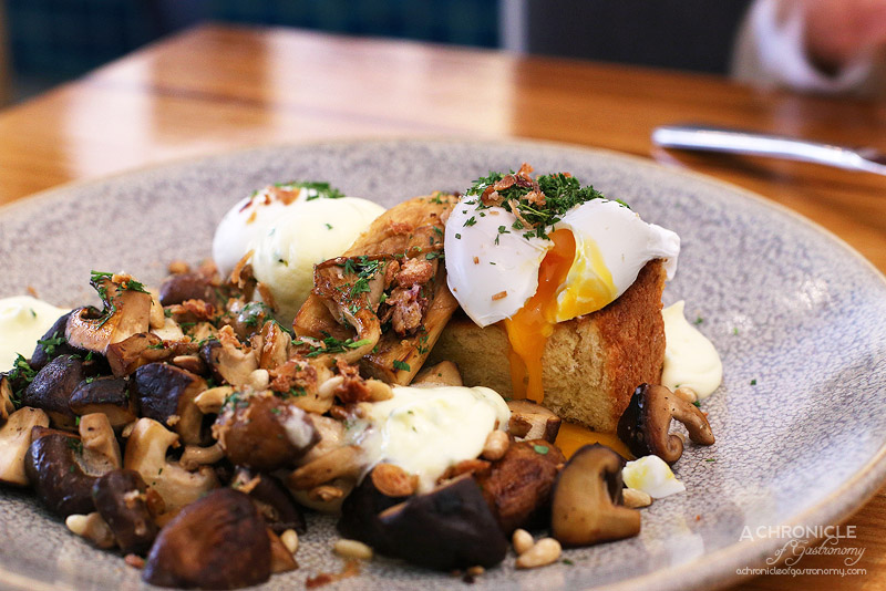 Two Birds One Stone - Sauteed mushrooms on brioche with whipped goats cheese cream, roasted pine nuts and two poached eggs ($20)