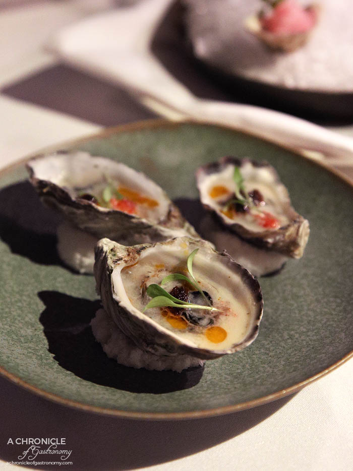 Steer Dining - Baked oysters, coconut broth, chilli jam, finger lime ($4,50 ea) Freshly shucked oysters, shiso, yuzu granita ($4.50 ea)