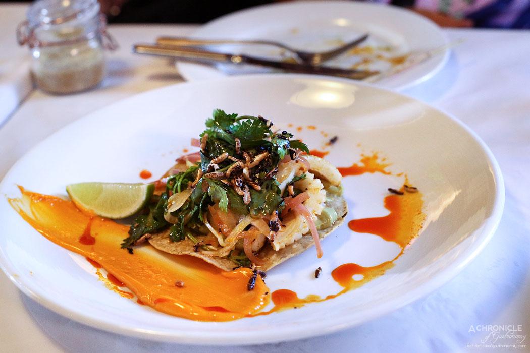 Watts Cooking - Tostada of crisp chilli salted calamari, grilled chorizo, chipotle, avocado crema and a cucumber, coriander & red onion salad ($18.50)